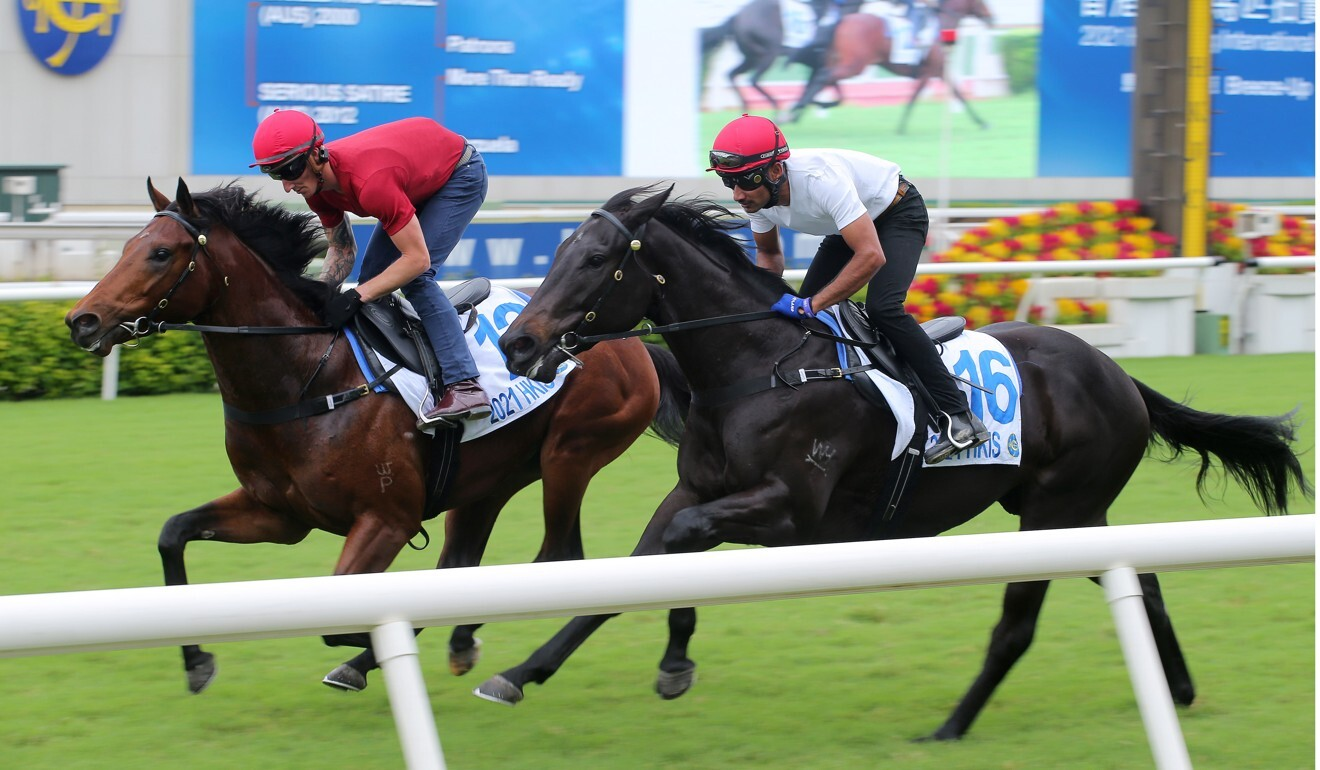 Lots 12 and 16 breeze-up at Sha Tin on Saturday. They have both been withdrawn from the sale.