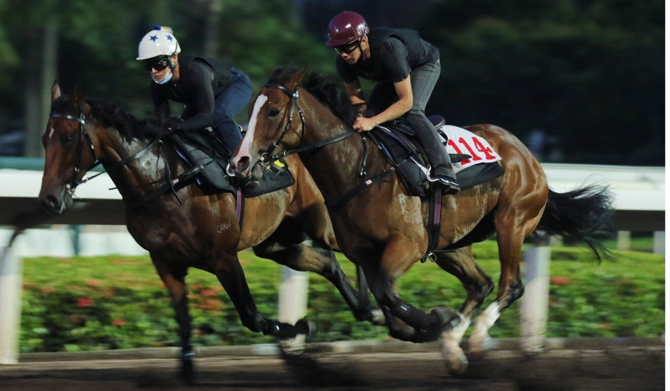 Keith Yeung works Natural Storm (left) at trackwork.