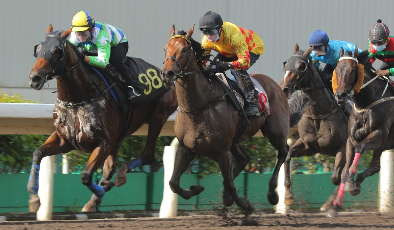 Amigos Giggle (yellow silks) competes in a recent barrier trial.