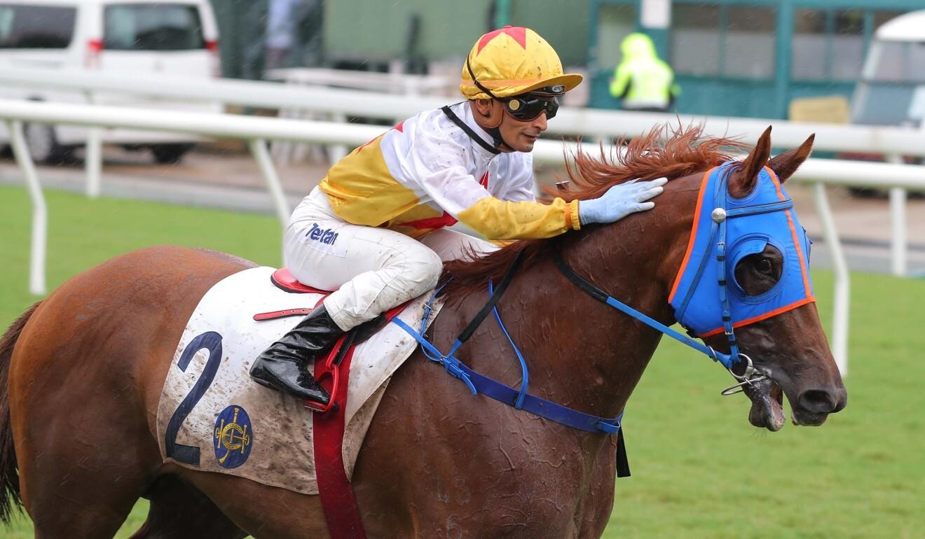 Karis Teetan gives Man Star a pat after a recent victory.