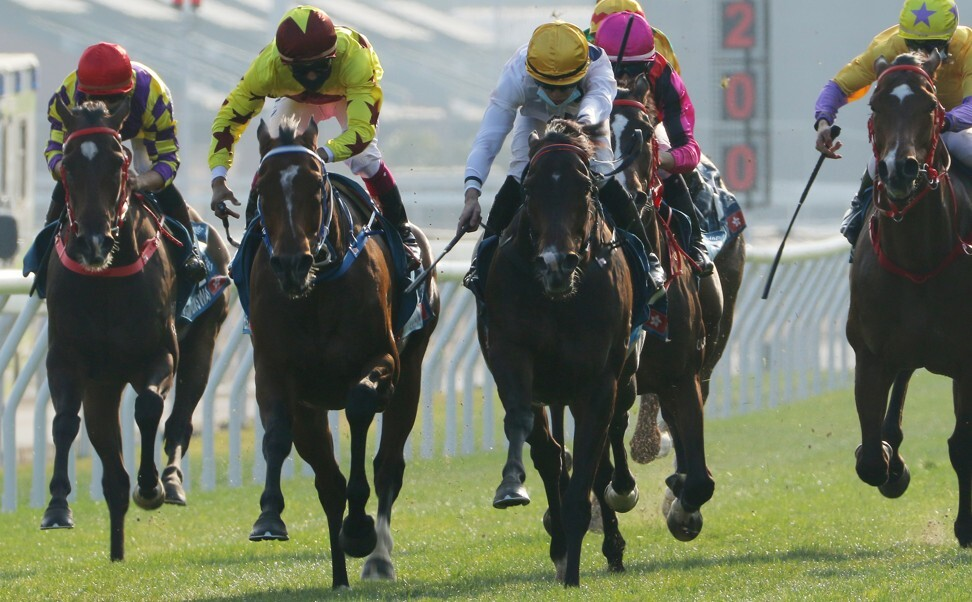 Golden Sixty (right) edges Southern Legend in the Stewards' Cup in January.