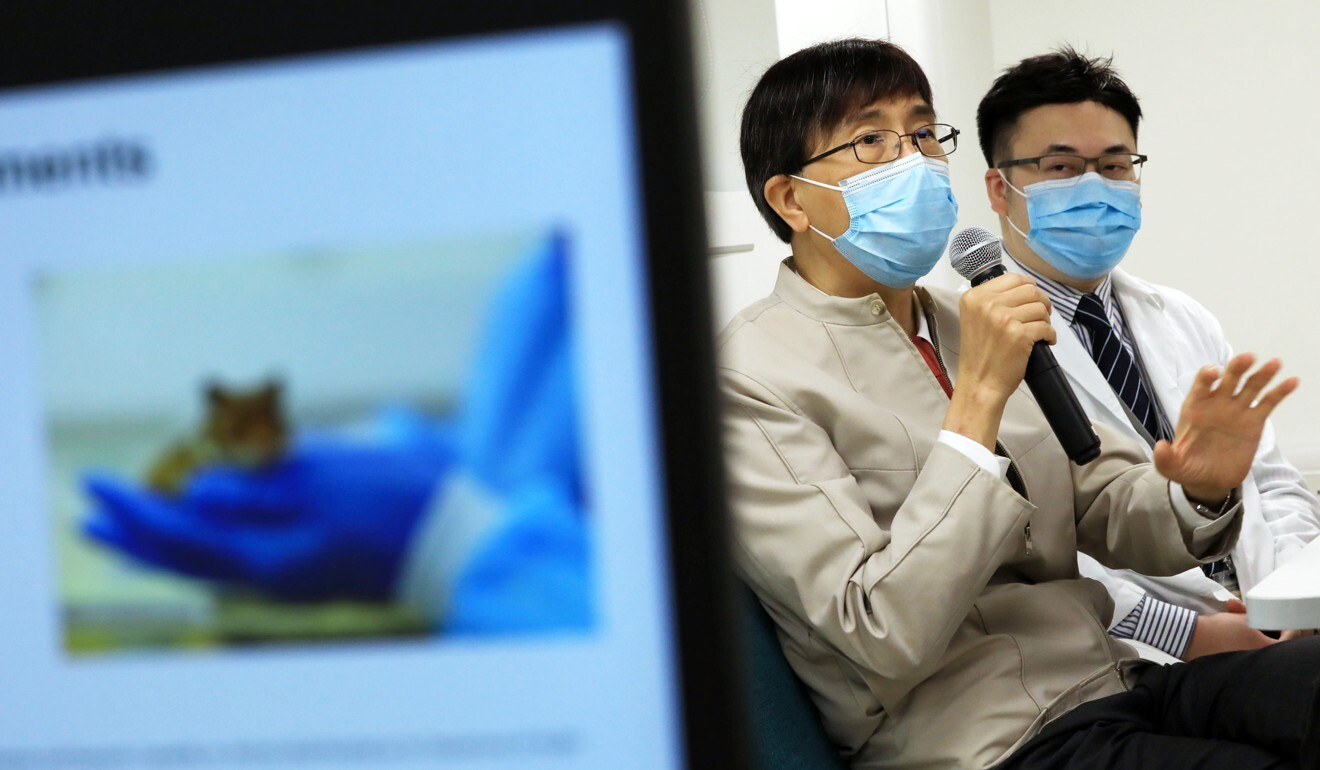 The study was led by University of Hong Kong microbiologist Yuen Kwok-yung (left) and associate professor Jasper Chan. Photo: May Tse