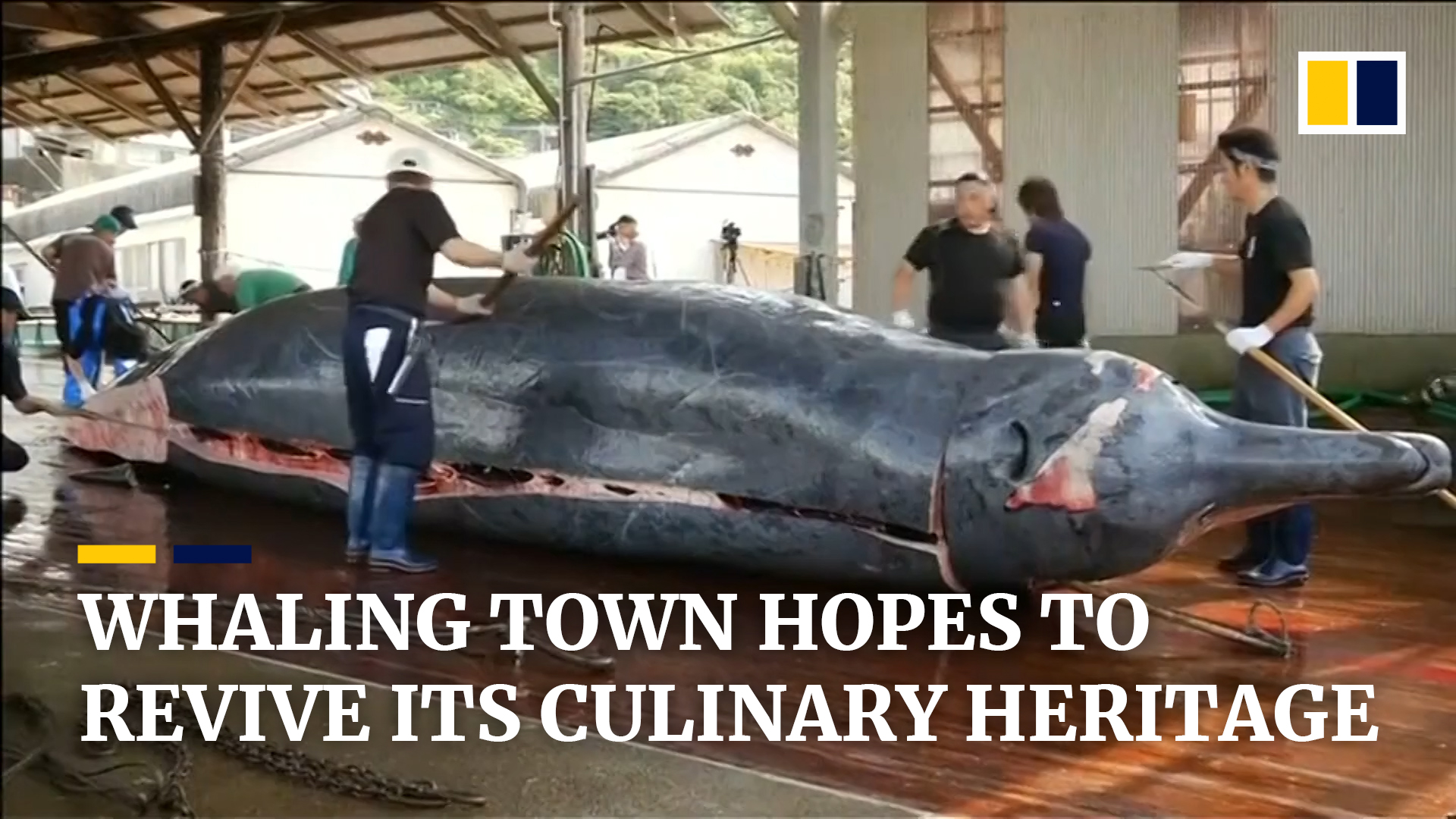 Japanese whale domination