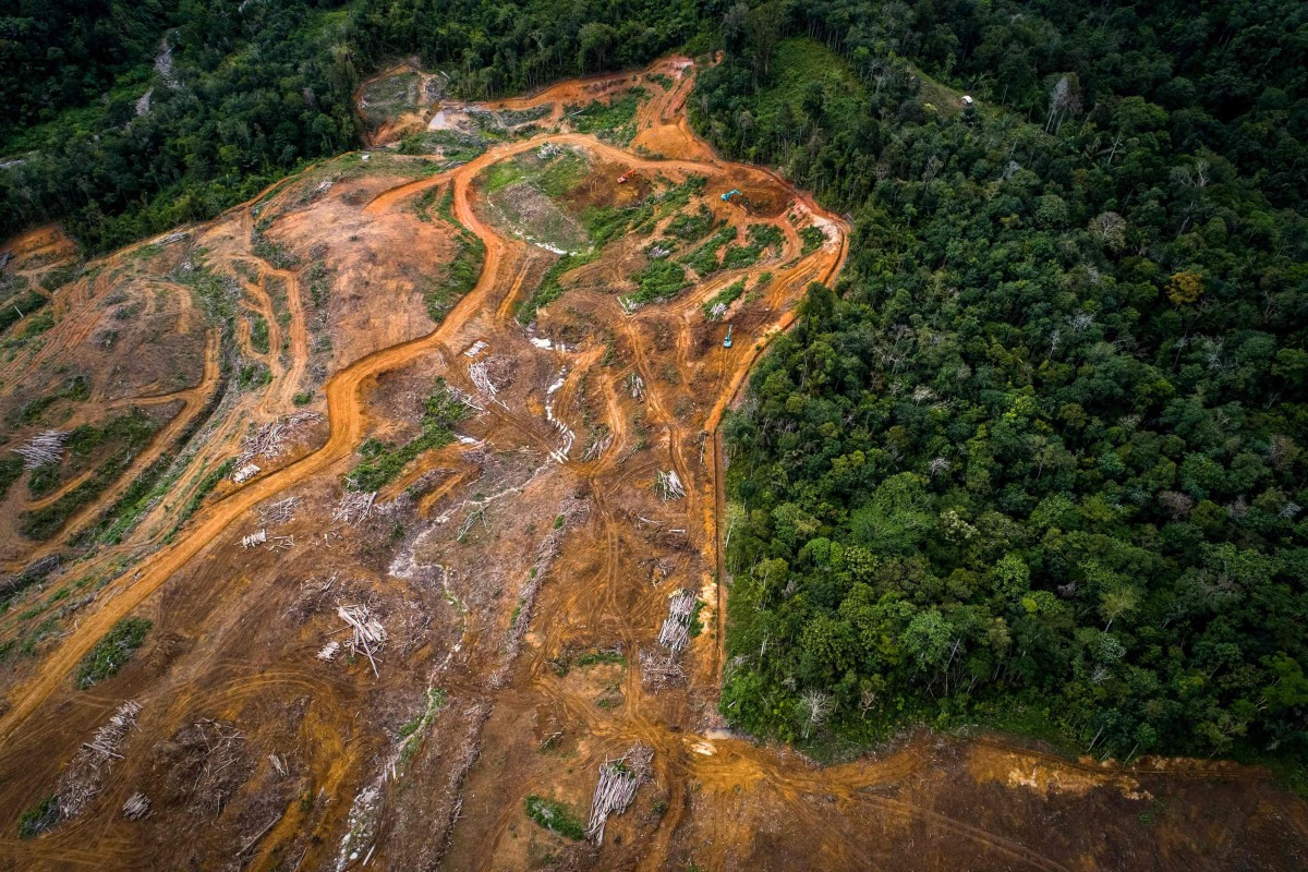 An aerial view on August 20, 2018, of land cleared as a staging area for the building of a new hydroelectric dam in the Batang Toru rainforest, the only known habitat of the Tapanuli orangutan, on Sumatra island. Photo: Handout by the Sumatran Orangutan Conservation Programme SOCP)/AFP