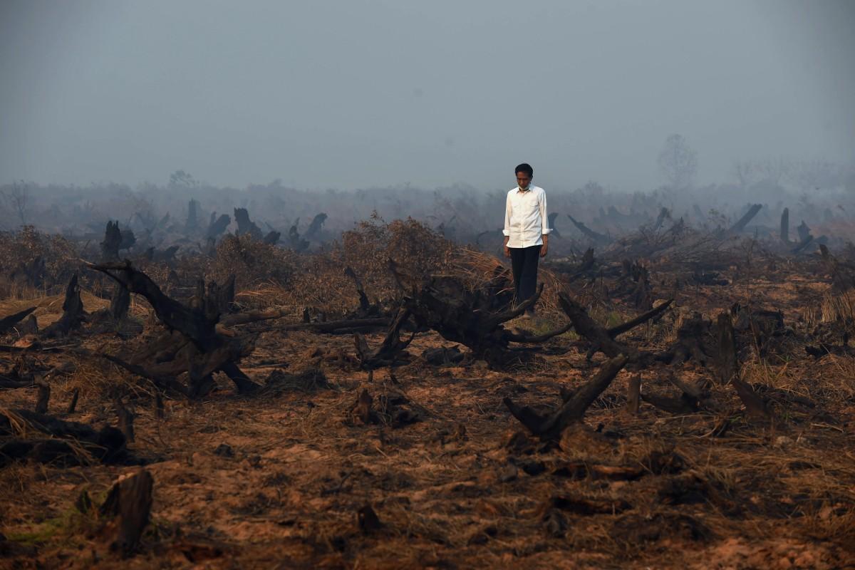 economia a basso tenore di carbonio
