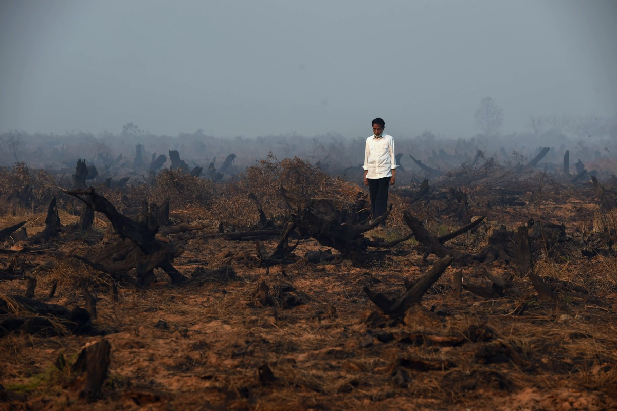 Why Indonesia is right to seek a low-carbon future for the sake of