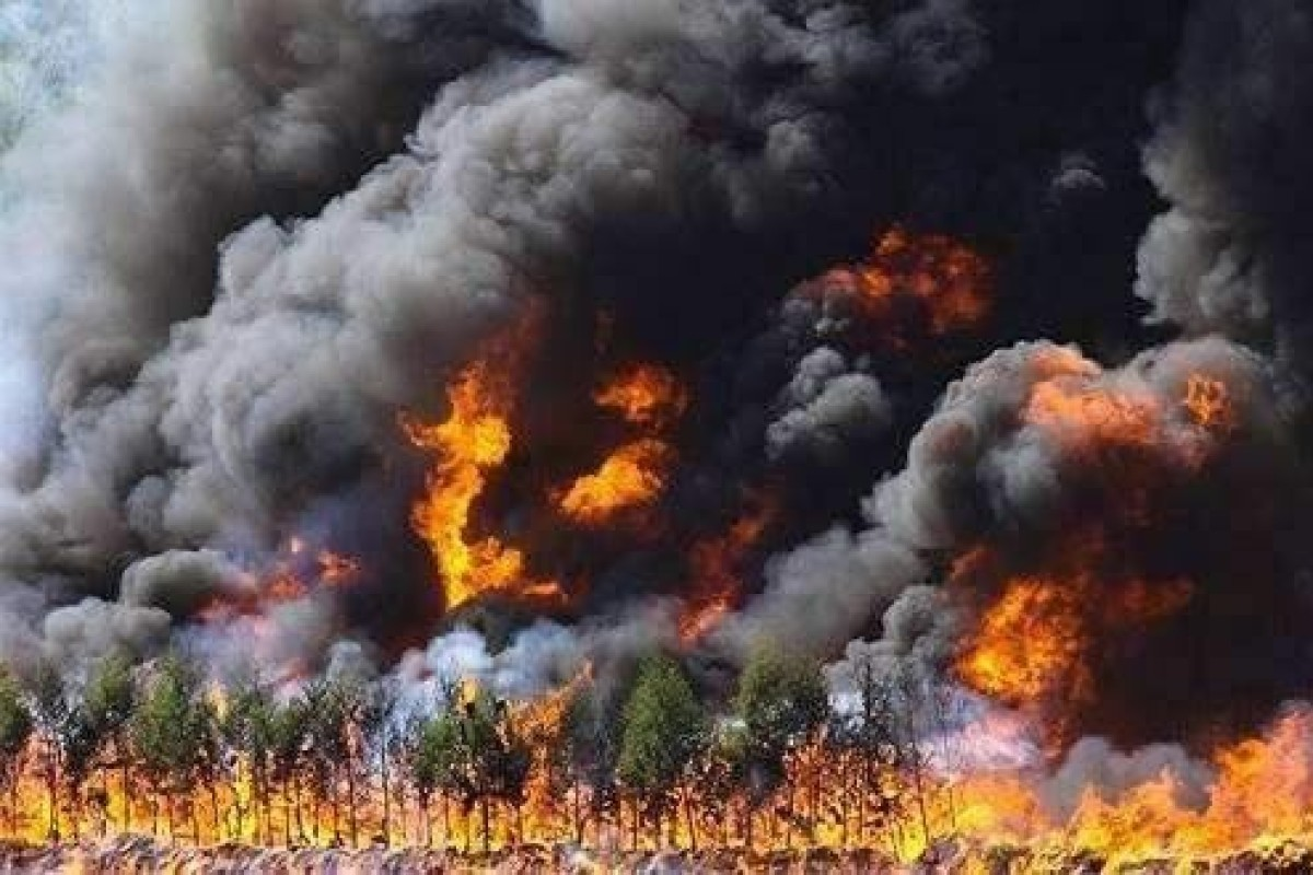 Firefighters battle to control forest fire in northern China