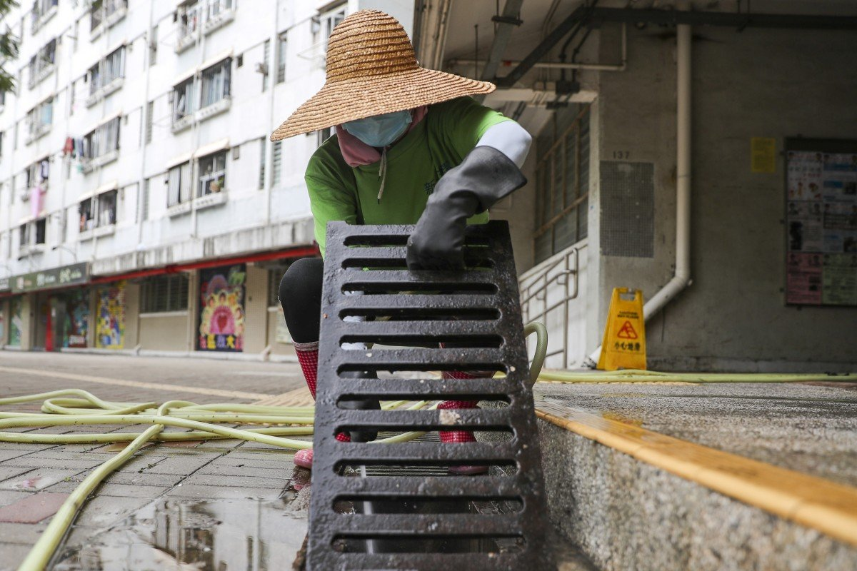 Hong Kong's pest control methods slammed as cleaning measures stepped up after latest cases of rat...