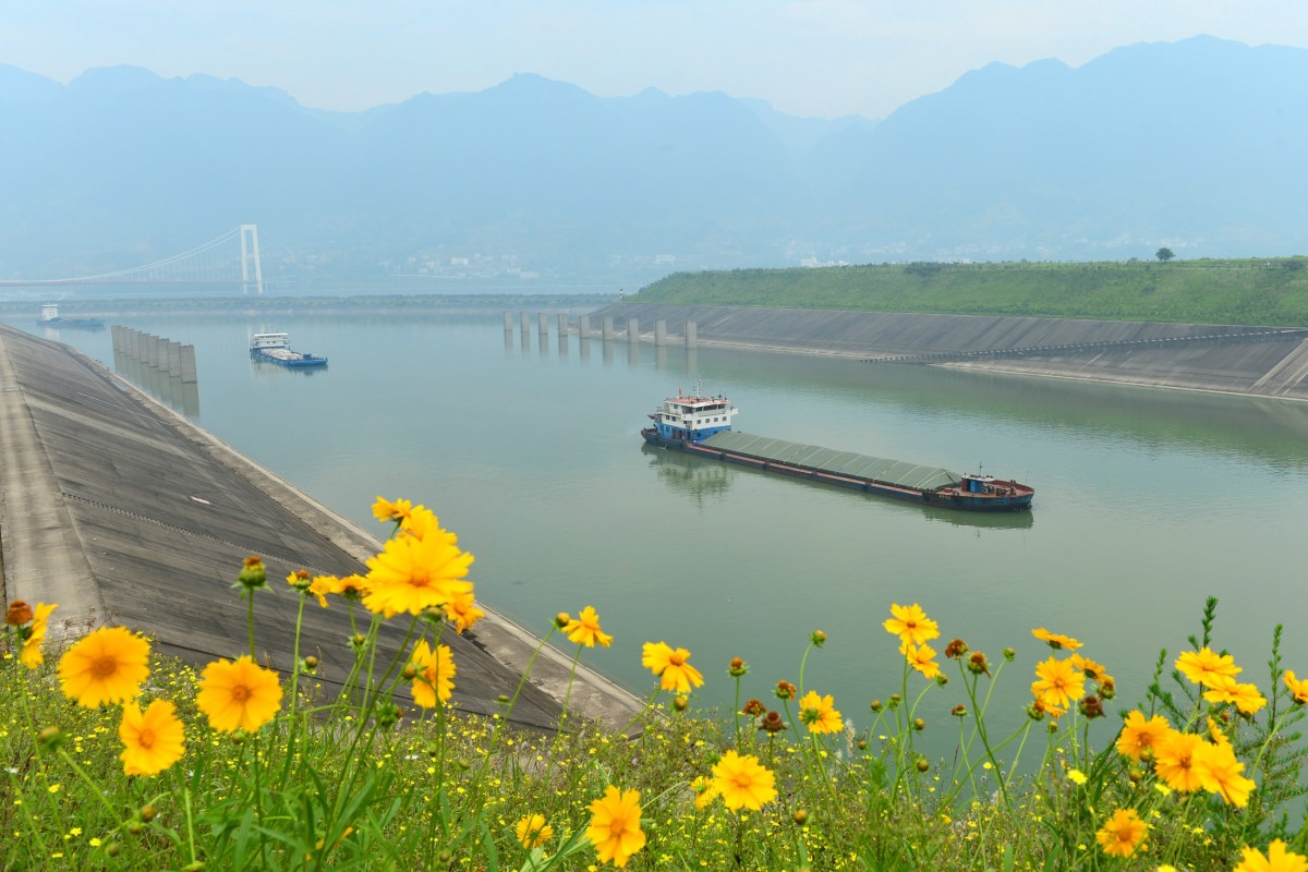 Vessels head for the lock of the Three Gorges Dam in Yichang, in central China's Hubei province. Sediment build-up in the dam's reservoir stems from silt flow disruption in the Yangtze River, Brahma Chellaney writes. Photo: Xinhua