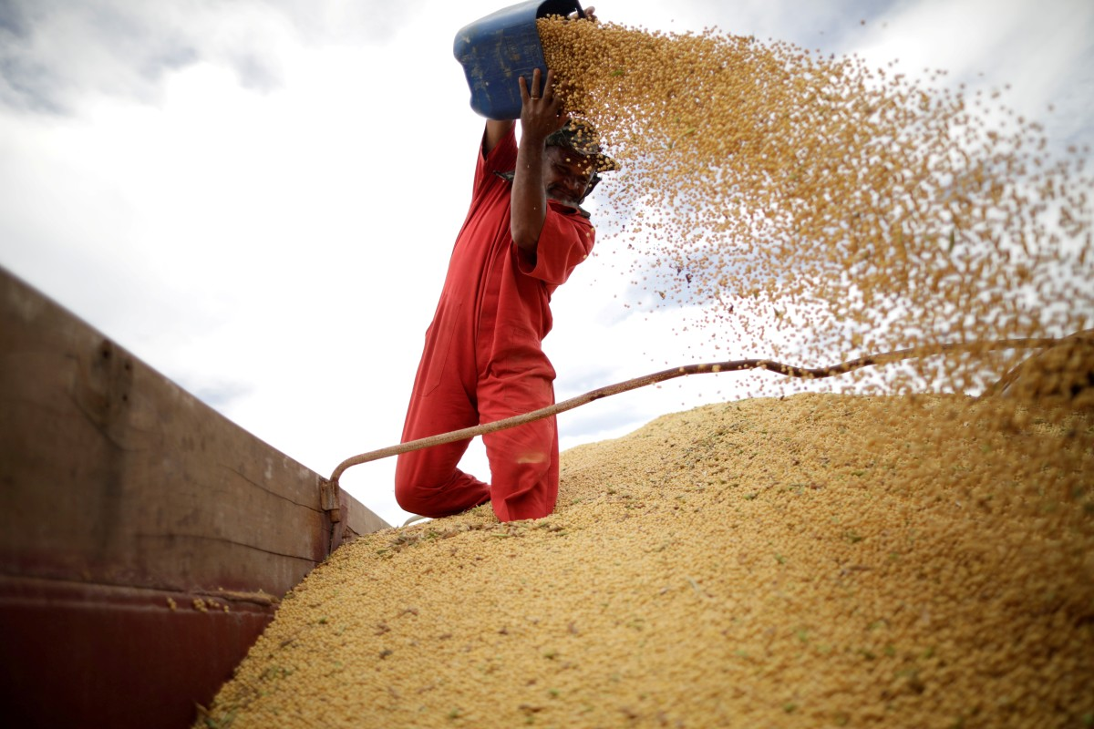 China puts US soy buying on hold as tariff war escalates | South