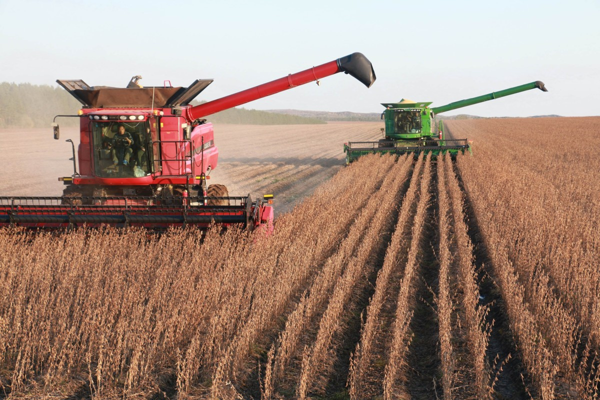 Sex, Lies, and Soybeans