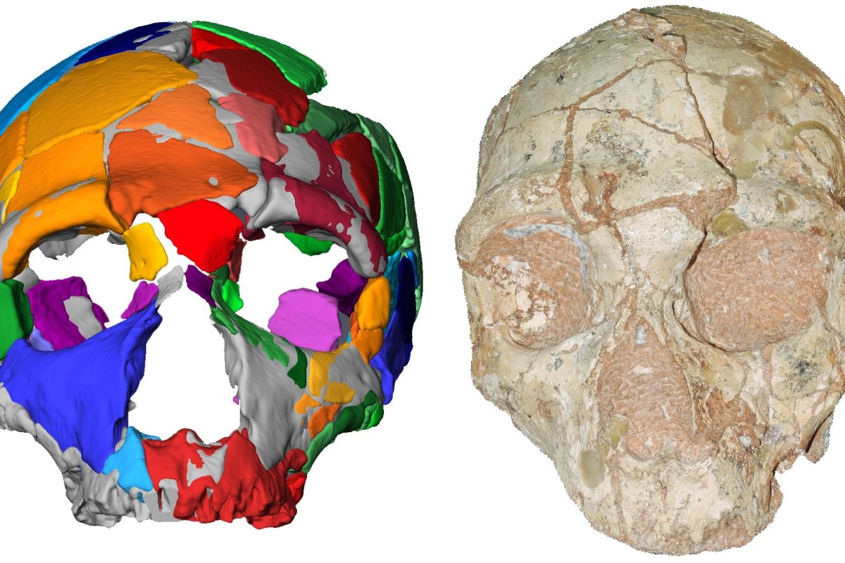 Rewriting history: 210,000-year-old skull found in Greece identified