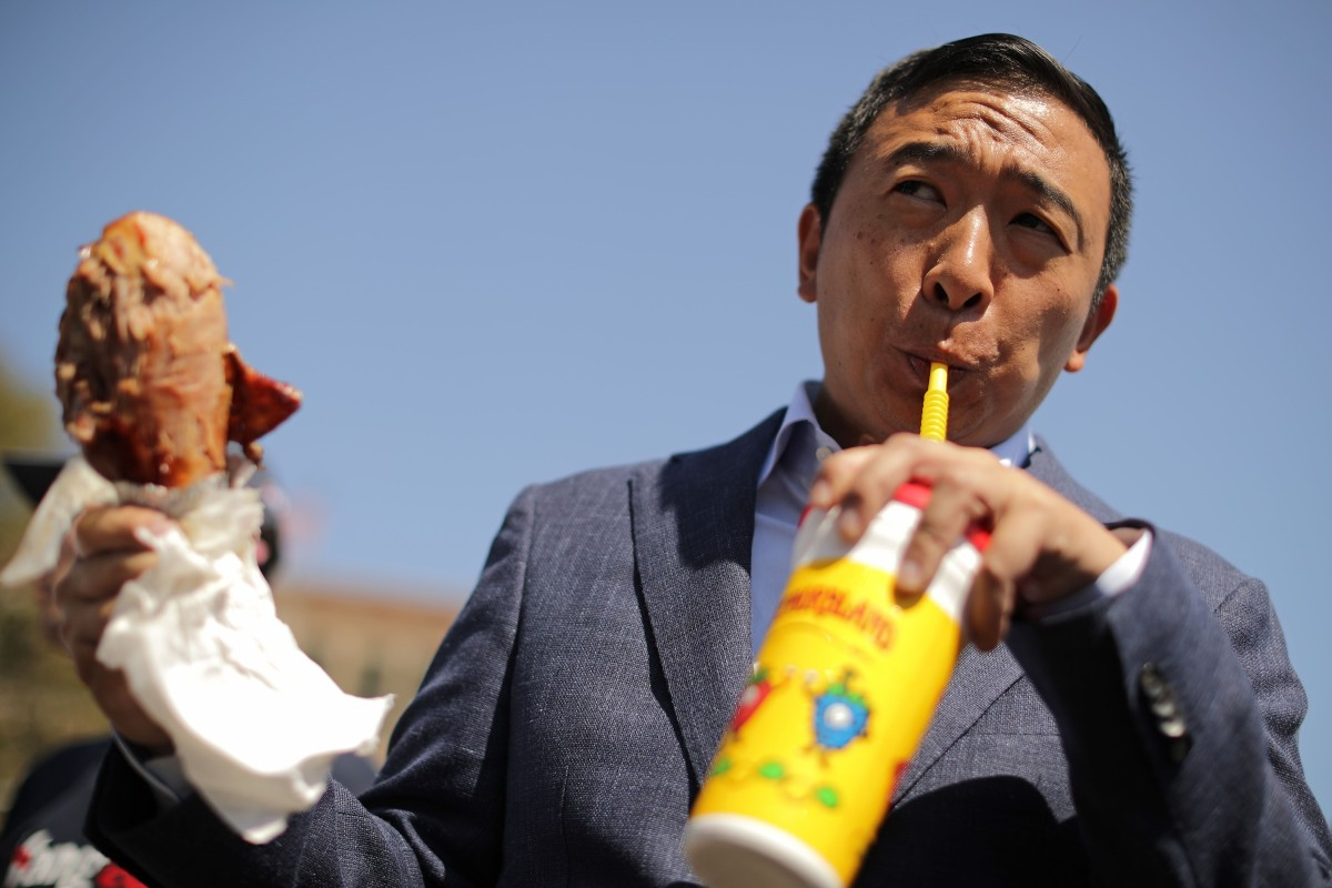 Elon Musk 'supports' 2020 White House long-shot Andrew Yang
