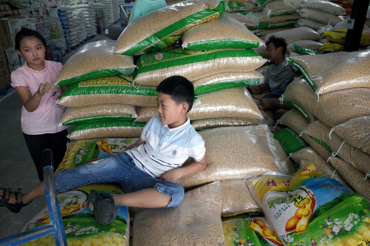 China Warned It Should Not Pin Its Hopes On Russian Soybeans