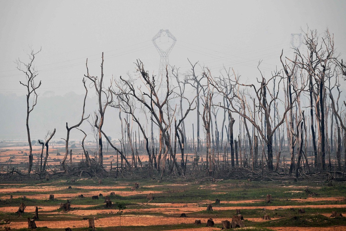 Global outcry grows as hundreds of new fires rage in Amazon
