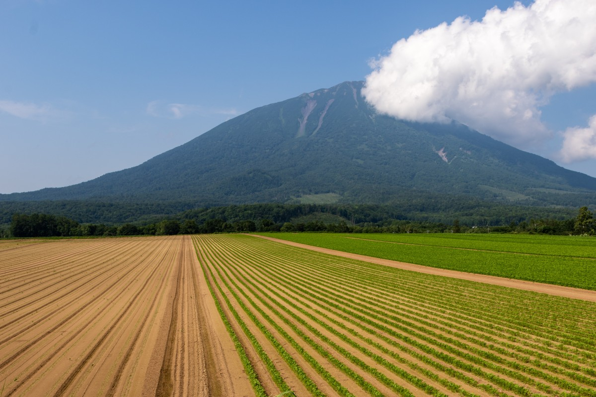 Mount Yotei is a popular destination for travellers both in winter and summer. Photo: Niseko Photography and Guiding