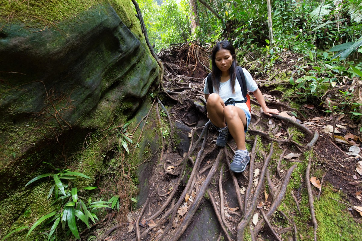 Hiking Doi Inthanon National Park in Chiang Mai, Thailand, home of country's highest peak and a waterfall...