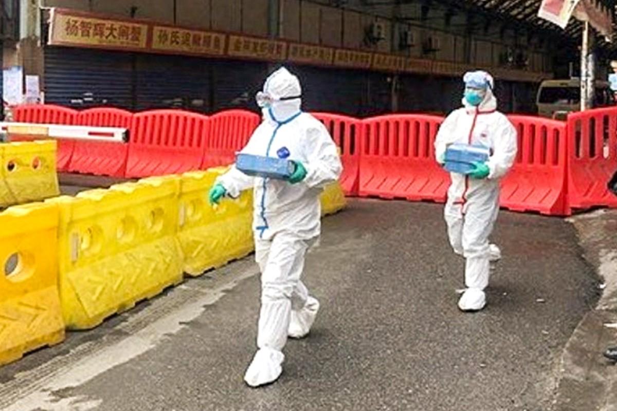 new virus in china - photo #15