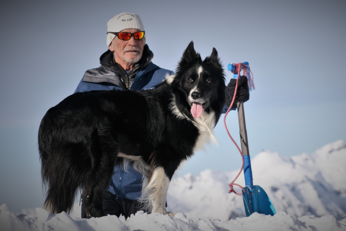 Avalanche dogs: up close with the canine lifesavers as they train with their masters in the French Alps