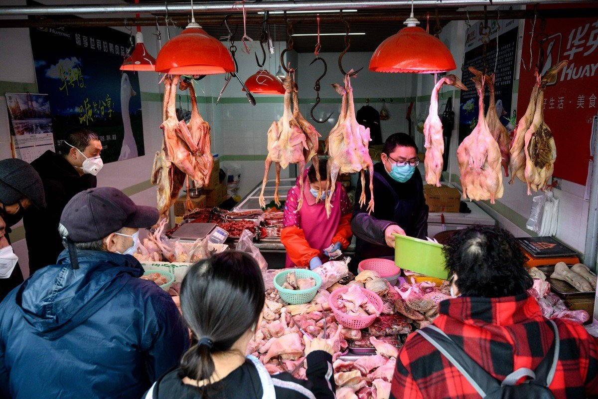 China is the world's second-largest poultry producer and has been ramping up output to fill a huge meat shortage after an African swine fever epidemic decimated its pig herd. Photo: AFP