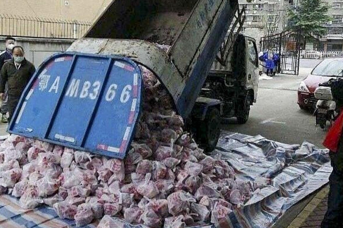Residents in Wuhan say pork portions from government stores were tipped from a dirty rubbish truck onto the street before being distributed for human consumption. Photo: Weibo