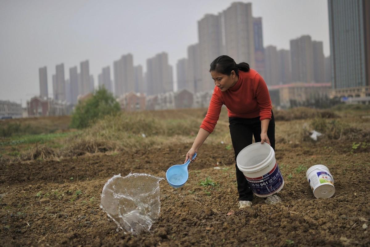 Durante las últimas tres décadas, los gobiernos locales en China han usado sus poderes para apoderarse de las tierras rurales que se consideran necesarias para los desarrollos.  Foto: Reuters