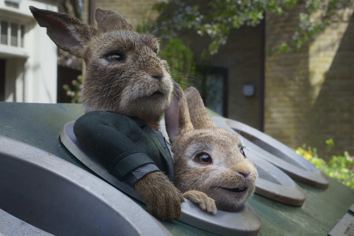 Peter Rabbit 2: The Runaway movie review – James Corden's silly bunny  returns for charming sequel | South China Morning Post