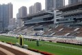 Determined to maintain one of Hong Kong's most important sports, The Hong Kong Jockey Club has implemented stringent measures at its racecourses to mitigate public health risks. Racecourse attendance has been reduced from an average of around 22,000 before the outbreak, to an average of around 300 horse owners and accompanying guests.