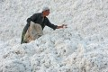 Cotton harvested in Xinjiang province is piled up at a factory. The Chinese government joined mainland consumers in pressing global fashion brands to reverse the Xinjiang cotton boycott. Photo: Getty Images