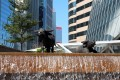 Two ox statues outside the Hong Kong stock exchange building in Central. Photo: Xinhua