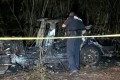 Two men died after a Tesla vehicle crashed into a tree in Texas on April 17. Photo: Scott J. Engle via Reuters