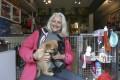 Sally Andersen, founder of Hong Kong Dog Rescue. Photo: Jonathan Wong