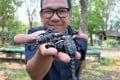 Danai Siriburee is a university lecturer who breeds scorpions for food. Photo: Tibor Krausz