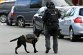 A police officer with a service dog on patrol after the shooting in Utrecht on March 18, 2019. Photo: Reuters