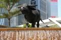 Hong Kong's stock market entered a bull market on Monday. Photo: Dickson Lee