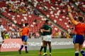 South Africa celebrate Singapore Sevens victory. Photo: World Rugby