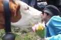 A screen grab from a video promoting the cow kissing challenge. Photo: Castl via YouTube