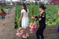 Visitors have been filmed breaking into the park in Sichuan to pick its lotus flowers. Photo: Red Star News