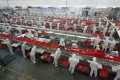 Employees process meat along a production line at a factory of Shuanghui (Shineway) Group in Luohe, Henan province, on June 17, 2013. Photo: Reuters