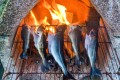 Cod and saithe grill on a fire in Norway. Fish is a mainstay of the Nordic diet. Photo: Alamy