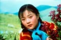 A still from The Sent Down Girl, one of five films that were banned in China, but won awards at Taiwan's Golden Horse Awards.
