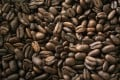Coffee beans being packed for export in Medan in Indonesia in April 2013. Photo: Reuters