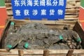 The crocodiles were found packed inside 158 wooden boxes. Photo: Weibo