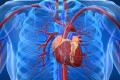 Heart diseases cost the US some US$555 billion in 2016, which is forecast to double to US$1.1 trillion by 2035, including health care services, medication and lost productivity, according to American Heart Association. Photo: Alamy