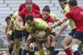 South China Tigers (yellow) can look forward to a new season competing in Global Rapid Rugby in March. Photo: Jonathan Wong