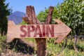 Spain grows more than 400 varieties of grape. Here are some to acquaint yourself with. Photo: Shutterstock