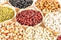 Nutritious and versatile, legumes are not for everyone. They can be difficult to break down in the gut and may cause digestive problems such as flatulence. If you want to add them to your diet, experiment to find which ones your body readily accepts. Photo: Shutterstock