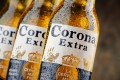"""Searches for """"corona beer virus"""" began on January 9, according to Google Trends. Photo: Shutterstock"""