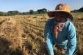 Thai land rights activist Waewrin Buangern, or Jo, working in the fields in Ban Haeng village. Photo: Lam Le