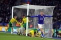 Leicester City's Jamie Vardy celebrates after scoring against Norwich City at the King Power Stadium. Photo: EPA